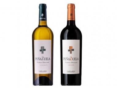 Dúo Peñazuela: vino tinto y blanco de garnachas seleccionadas